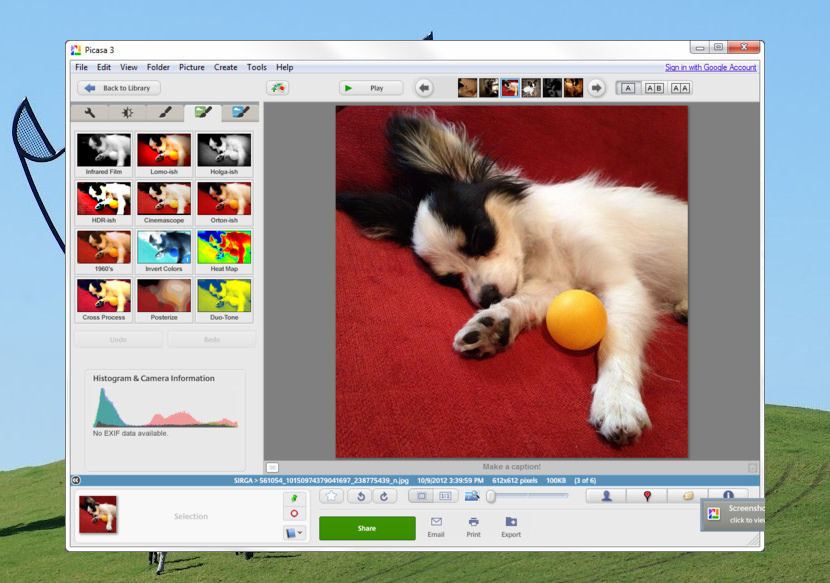 picasa free google download media photo
