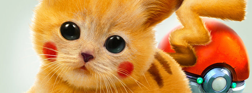 Real Pikachu Pokemon Cat Facebook Cover
