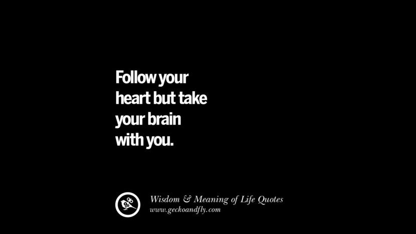 Follow your heart but take your brain with you. funny wise quotes about life tumblr instagram wisdom Funny Eye Opening Quotes About Wisdom And Life twitter reddit facebook pinterest tumblr