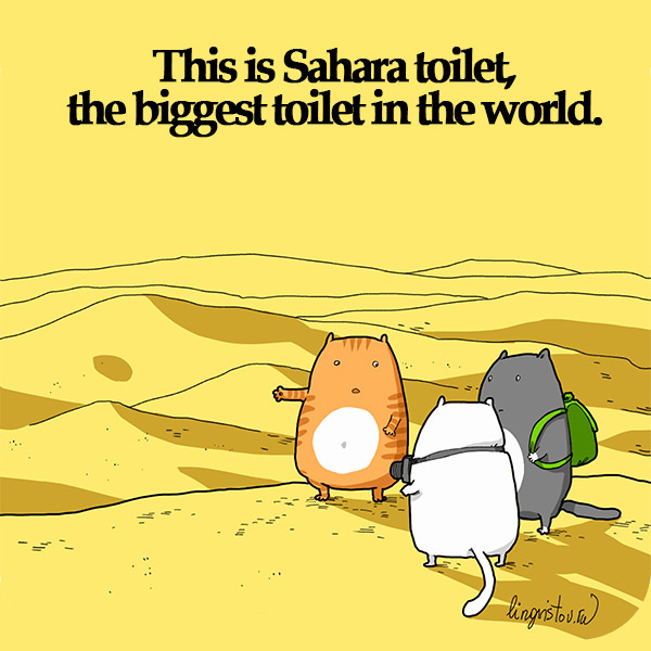 This is Sahara toilet, the biggest toilet in the world. 40 Funny Doodles For Cat Lovers and Your Cat Crazy Lady Friend grumpy tom talking nyan instagram pinterest facebook twitter comic pictures youtube
