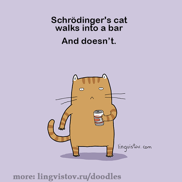 Schrodinger's cat walks into a bar... and doesn't. 40 Funny Doodles For Cat Lovers and Your Cat Crazy Lady Friend grumpy tom talking nyan instagram pinterest facebook twitter comic pictures youtube