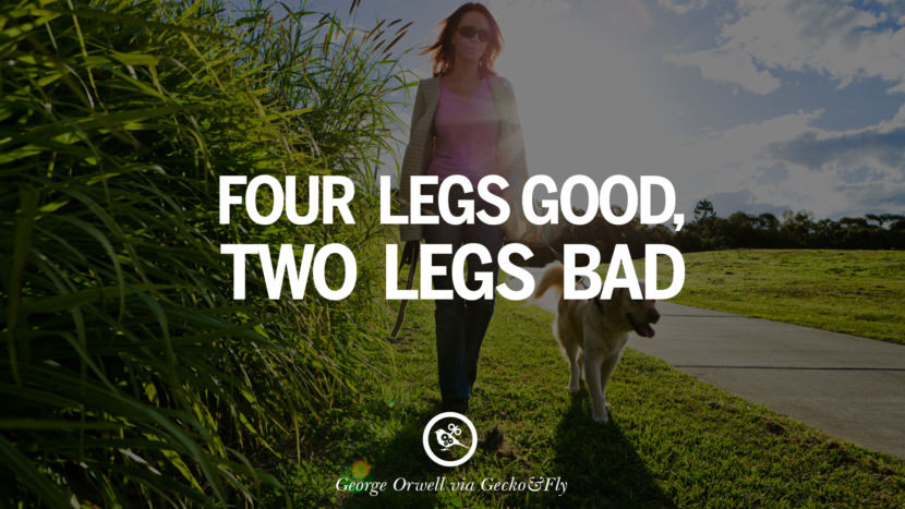 Four legs good, two legs bad. George Orwell Quotes From Shooting An Elephant, 1984 and Animal Farm instagram facebook twitter pinterest