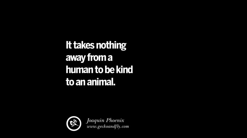 It takes nothing away from a human to be kind to an animal. - Joaquin Phoenix