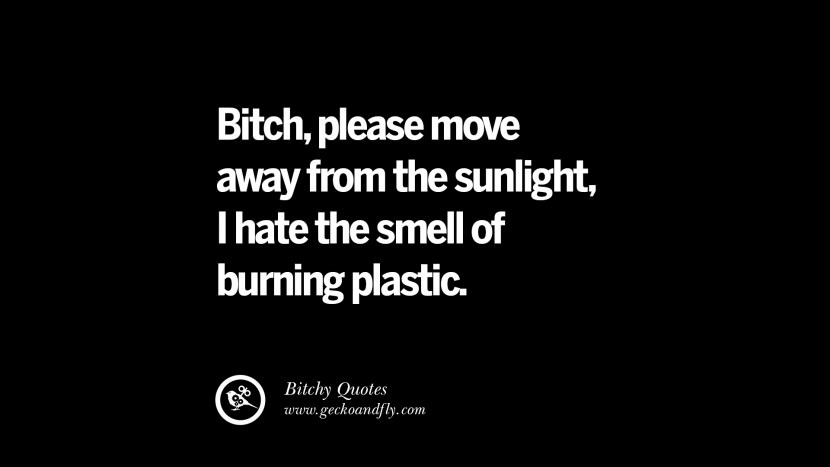 Bitch, please move away from the sunlight, I hate the smell of burning plastic. best tumblr instagram pinterest inspiring meme face
