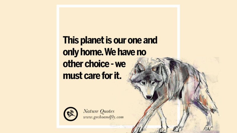 This planet is our one and only home. We have no other choice - we must care for it. Beautiful Quotes About Saving Mother Nature And Earth