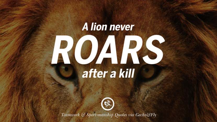 A lion never roars after a kill. Quotes Sportsmanship Teamwork Sports Soccer Fifa Football Cricket NBA Basketball Hockey Tennis Volleyball Table Tennis Baseball Rugby American Football Golf facebook twitter pinterest team work sports saying live online olympics games teamwork quotes inspirational motivational