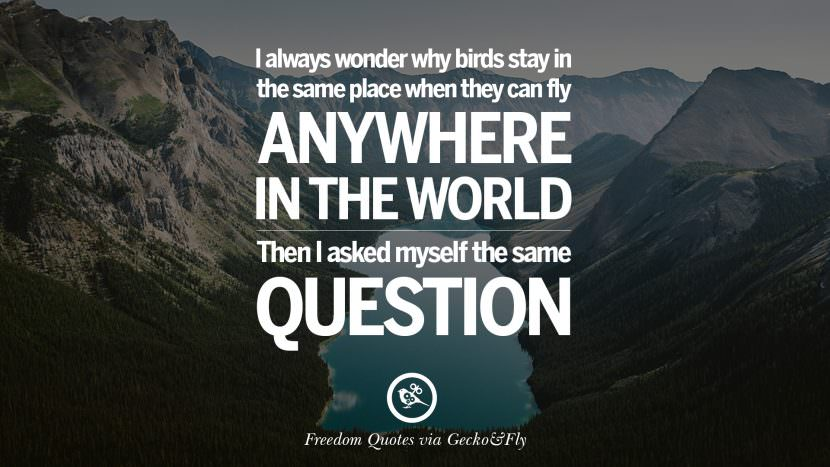 I always wonder why birds stay in the same place when they can fly anywhere in the world. Then I asked myself the same question. Inspiring Motivational Quotes About Freedom And Liberty Instagram Pinterest Facebook Happiness