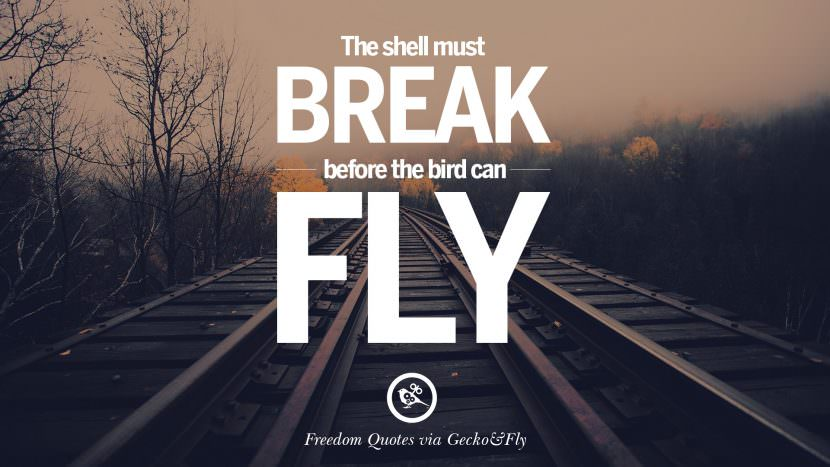 The shell must break before the bird can fly. Inspiring Motivational Quotes About Freedom And Liberty Instagram Pinterest Facebook Happiness