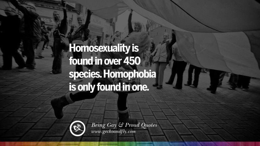 Homosexuality is found in over 450 species. Homophobia is only found in one. Quotes About Gay Pride, Pro LGBT, Homophobia and Marriage Discrimination Instagram Pinterest Facebook