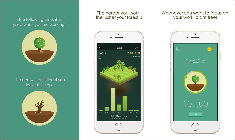 """Képtalálat a következőre: """"smartphone grow forest"""""""
