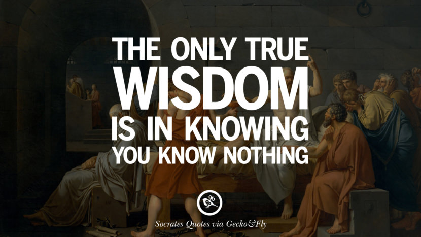 The only true wisdom is in knowing you know nothing. Quotes By Socrates On The Purpose And Wisdom Of Life