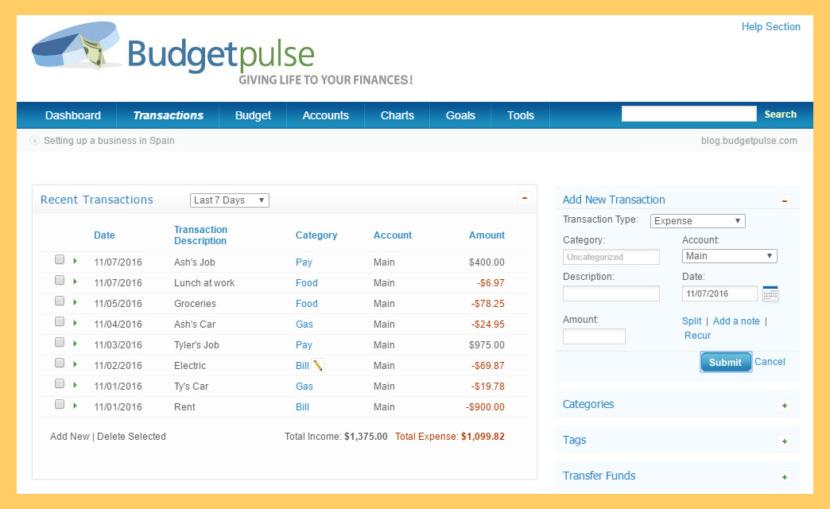 BudgetPulse