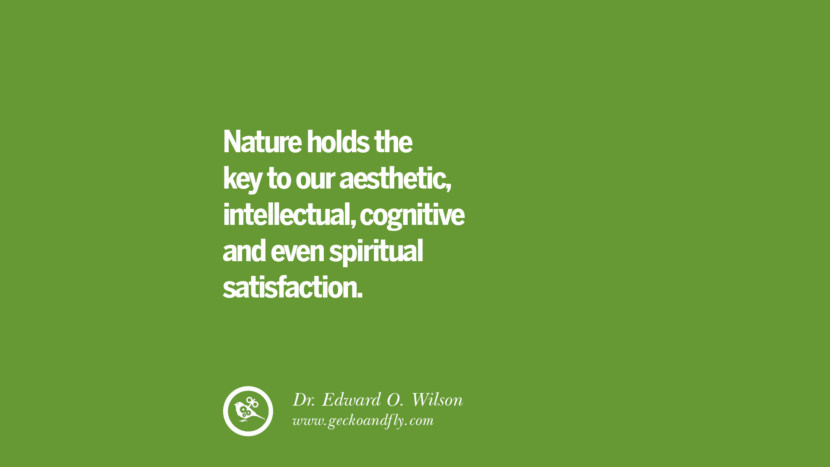 Nature holds the key to our aesthetic, intellectual, cognitive and even spiritual satisfaction. – Dr. Edward O. Wilson Sustainability Quotes On Recycling, Energy, Ecology, And Biodiversity