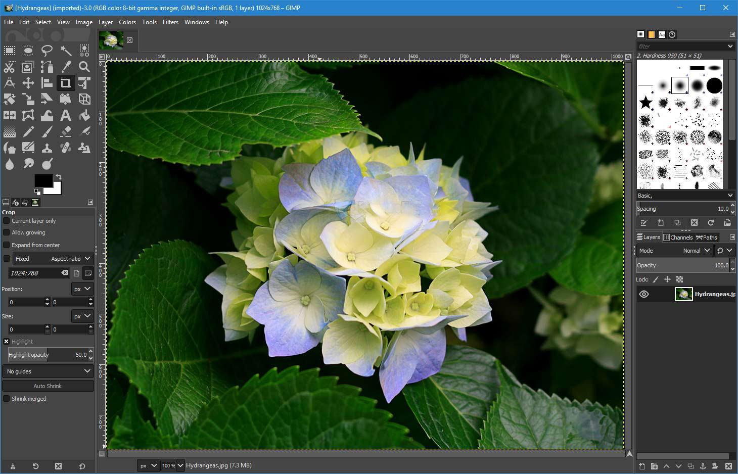 5 Free Photoshop Alternatives - Best Photo & Image Editor Online